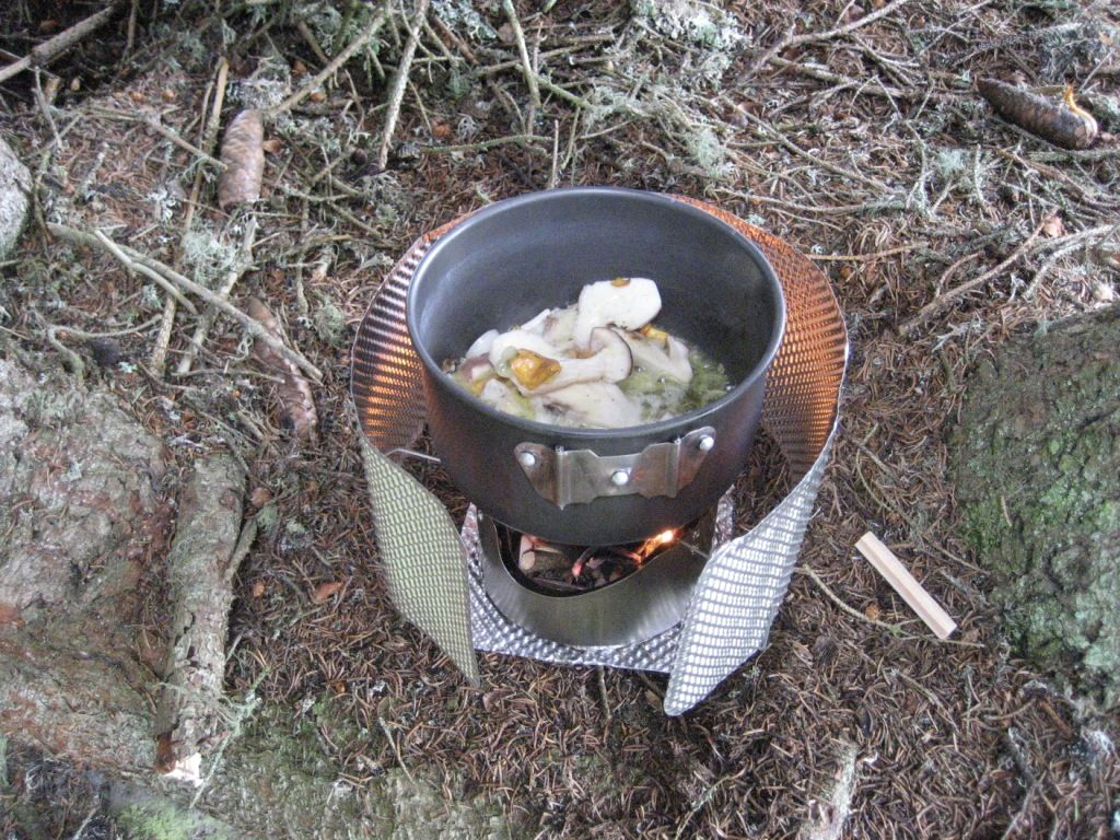 C pe de bordeaux et chanterelles en beurre avec nouilles - Cuisiner la chanterelle ...